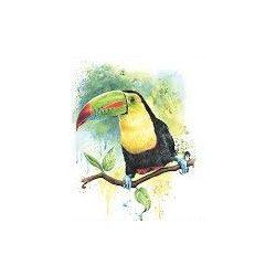 Derwent-watercolour-akvarell-muvesz-ceruza