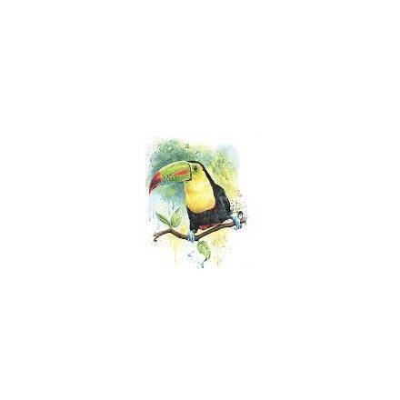 Derwent Watercolour akvarell művész ceruza 72szín darabáron