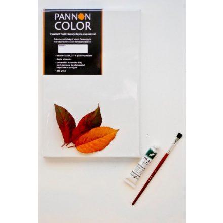 Pannoncolor keskeny keretű feszített vászon, Ft-tól